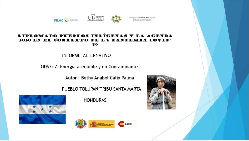 Presentacion Diplomado Pueblo TOLUPAN